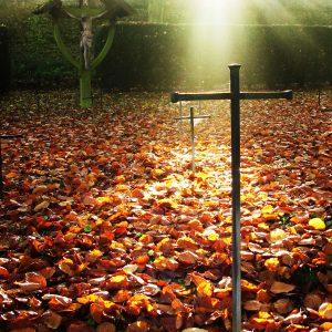 Malling graveyard in autumn